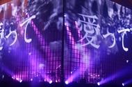 『amazarashi LIVE 360°「虚無病」』ライブ写真