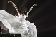 Cocco、20周年記念武道館ライブ2daysが初のLIVEアルバムに!