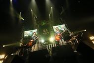 【さくらしめじ ライヴレポート】『菌育 in the 家(はうす) スペシャル!』2017年12月9日 at マイナビBLITZ赤坂