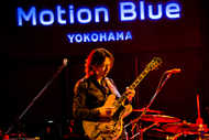 12月28日(木)@Motion Blue yokohama