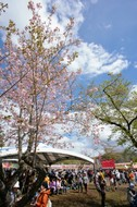 『ARABAKI ROCK FEST.10』、忌野清志郎氏トリビュートライヴのヴォーカル13名を発表