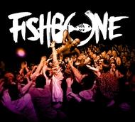昨年発売された『FISHBONE LIVE』